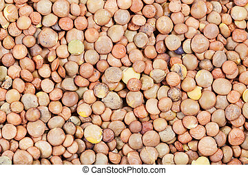 raw brown lentil seeds close up - food background - raw...