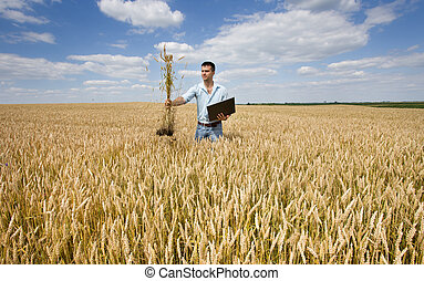 Farmer with laptop and wheat bunch - Young farmer holding...