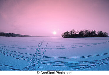 Sunset On The Frozen Lake - Winter pink sunset on the frozen...
