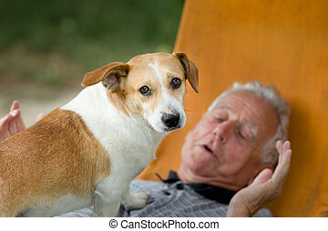 Senior man with dog - Cute dog standing on old man's chest...