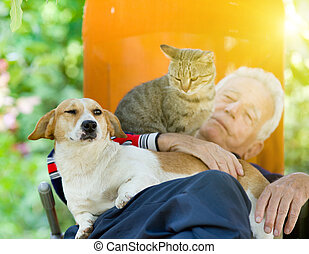 Senior man with dog and cat - Senior man sleeping in sunbed...