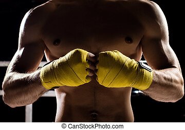 Professional healthy fighter is ready for competition -...
