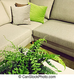 Corner sofa and fern plant decoration