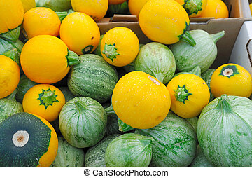 Green And Yellow Squash