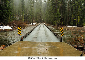 Forest River Crossing - Steel constructed bridge provides a...