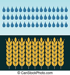 Ears of wheat in the rain. The cultivation of grain. Investments in agriculture. Dealing with drought.