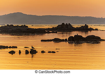 Rocky reefs at sunset - Rocky reefs in the sea of Espiñeiro...