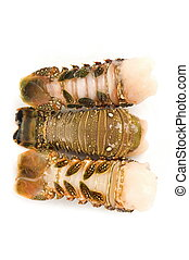 Lobster tail - Raw lobster tail - Studio shot of,