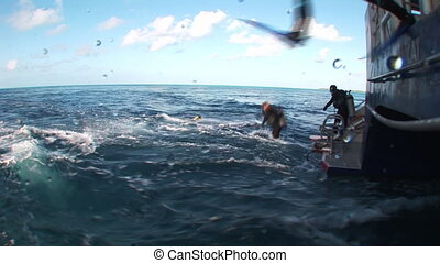 The group of divers jumping into the sea.