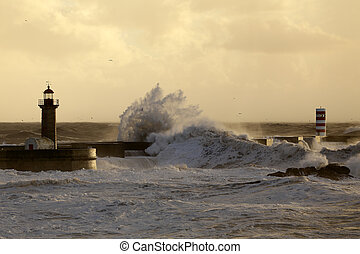 Stprmy sea waves at winter sunset - Big stormy waves over...