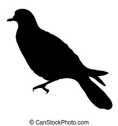 Turtle Dove Silhouette - Birds Silhouettes Vector EPS 10
