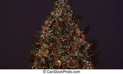 Huge Christmas tree.