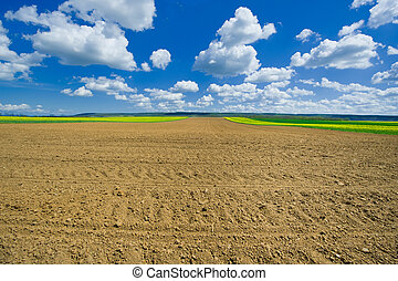 Ploughed field - Agricultural ploughed field under the blue...