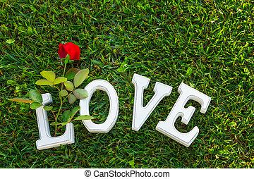Love sign with rose - Love sign with one red rose on green...