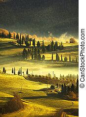 Tuscany foggy morning, farmland and cypress trees. Italy. -...