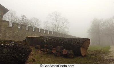 Rome Castle and Cut Woods in Foggy Misty Day