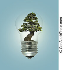 Bulb light with green tree inside  on blue background