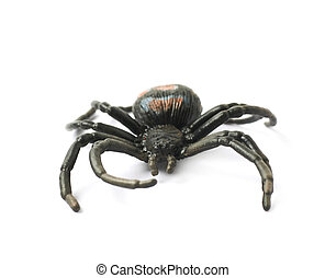 Fake rubber spider toy isolated over the white background