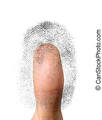 Biometric Identification - Close-up of a fingerprint and a...