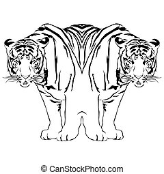 Tiger black and white reflection - Vector illustrator EPS 10...