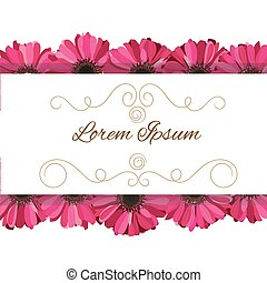 vector invitation with pink gerbera flowers