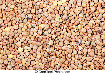 many raw brown lentil seeds - food background - many raw...