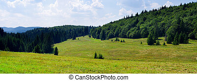 Idyllic landscape in the hills of Slovak Paradise