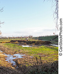 manure - plenty manure in a meadow in la spezia in winter...
