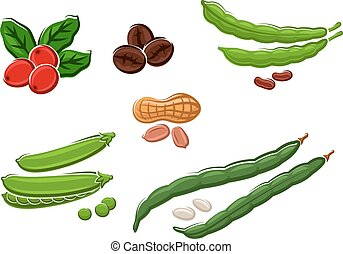 Assorted fresh cartoon legumes and nuts - Assorted fresh...