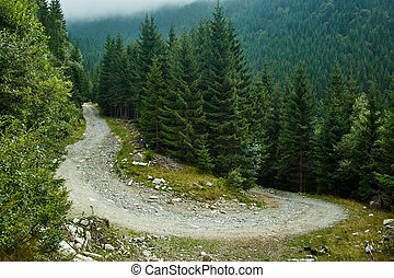 Dirt road in the mountains - Landscape with a dirt road in...