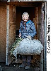 Woman farmer feeding animals
