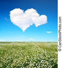 Valentines day - Blooming spring meadow and blue sky with a...