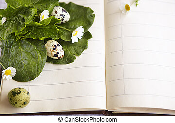 quail eggs on a notebook with daisies