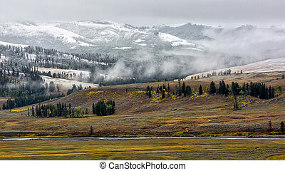 Countryside of Yellowstone National
