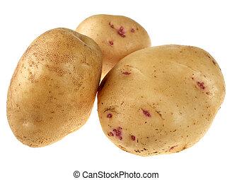 Yellow potato vegetable root closeup on white