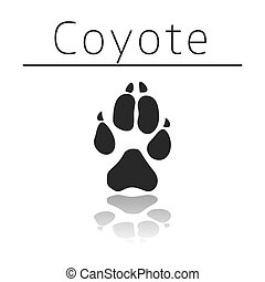 Coyote animal track with name and reflection on white...