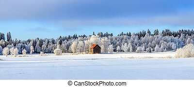 Winter, Landschaft - Winter, Scheune, Baum