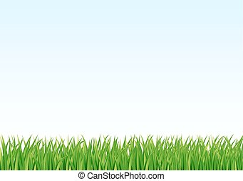 grass and sky background. vector