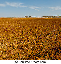 Plowed Fields in Israel