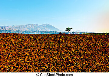 Plowed Fields - Plowed Sloping Fields of Tuscany in the...