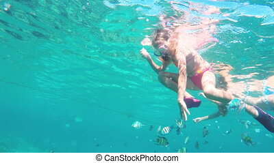 Young girl scuba diver - Girl scuba diver feeds coral...