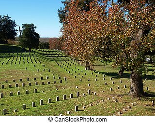 Hallowed Ground No. 2 - A view of part of the Vicksburg...
