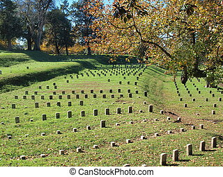 Hallowed Ground No. 1 - A view of part of the Vicksburg...