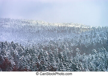 Beautiful slope of hill with winter trees in snow, season...