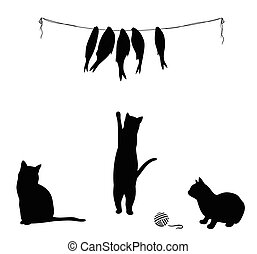 Cat climbs to dried fish