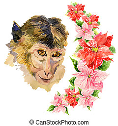 Monkey with amazing flowers - Monkey with an amazing red...