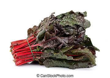 Red Chard - Bunch of red chard isolated on white background.
