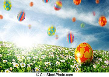 Eggs in Flower Field