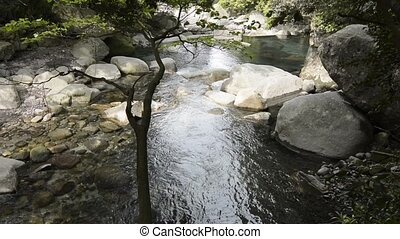 Brook flowing among rocks - Gently brook flowing among rocks...