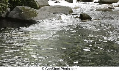 Gently brook flowing - Surface of slowly brook from flowing...